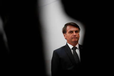 Um jabuti gigante olhando para Bolsonaro