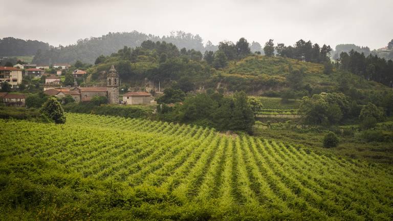Quintas são atração na região dos vinhos verdes