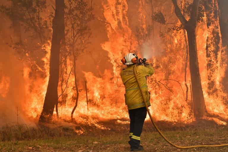 Bombeiro, de costas, segura uma mangueira sobre o ombro e mira o jato d'água em direção a árvores, que estão em chamas