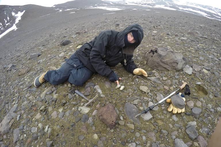 Pesquisadores encontram fóssil de pterossauro na Antártida