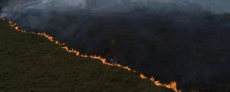 230 fundos que administram R$ 65 trilhões pedem ao Brasil que proteja Amazônia