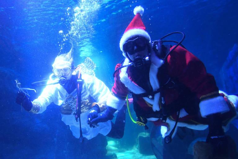 Um mergulhador vestido de anjo e outro vestido de papai Noel dentro de aquário