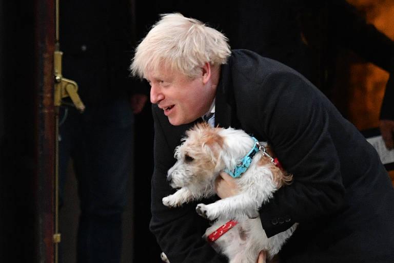 Cães nas eleições britânicas