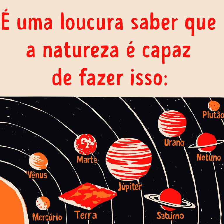 Meme mostra planetas do sistema solar representados com esferas. O planeta terra aparece como uma superfície plana