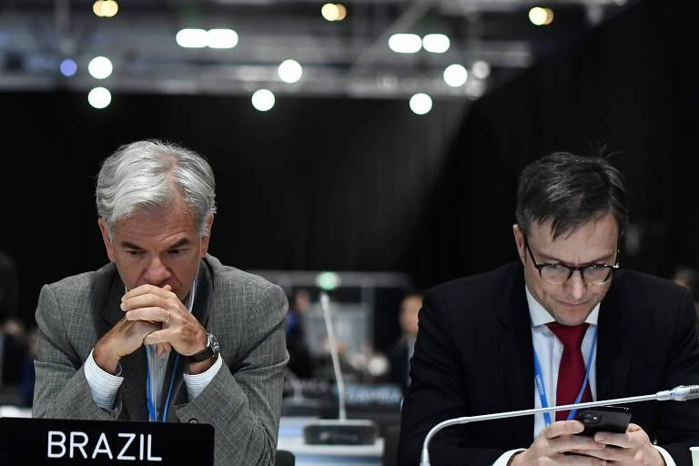 Da esquerda para a direita, Fabio Mendes Marzano e Leonardo Cleaver, representantes da delegação brasileira na plenária final da COP-25