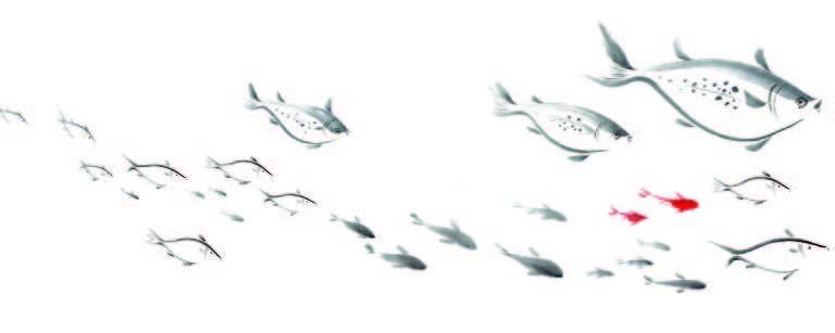 """Ilustração de """"Chão de Peixes"""", livro de Lúcia Hiratsuka"""