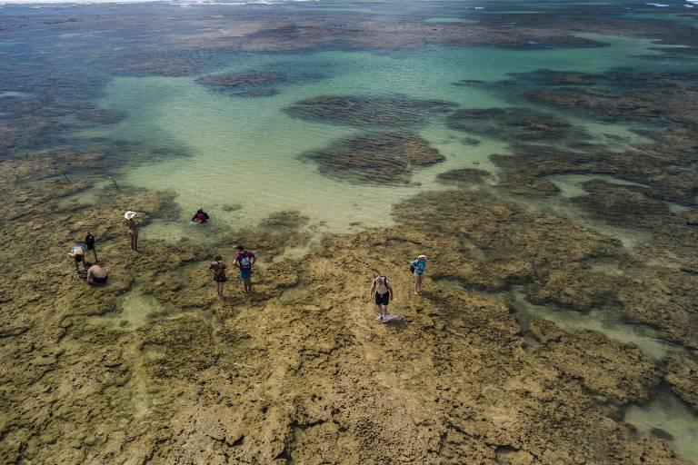 Cinco piscinas naturais no Nordeste