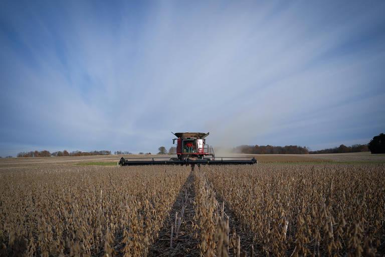 Colheita de soja em fazenda em Roachdale, no estado de Indiana