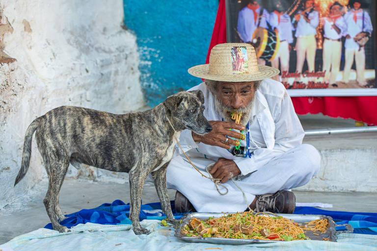 Festa para cachorros no Ceará