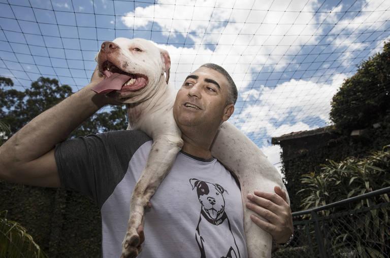Cães resgatados de rinha na Grande SP