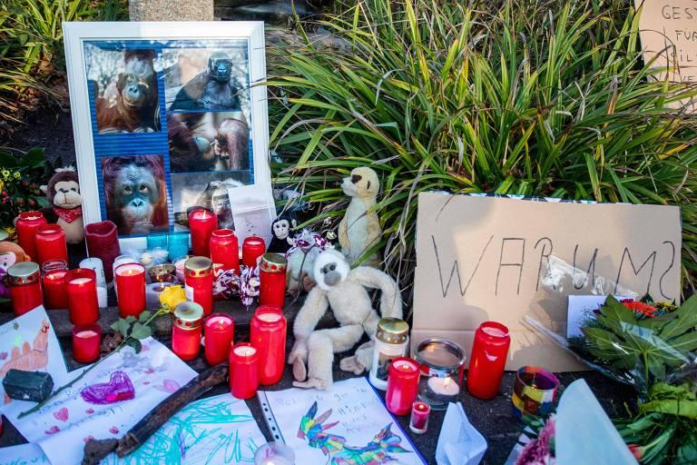 Flores e velas para animais mortos na Alemanha