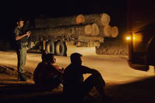 Caminhão com madeira ilegal apreendido na Transamazônica