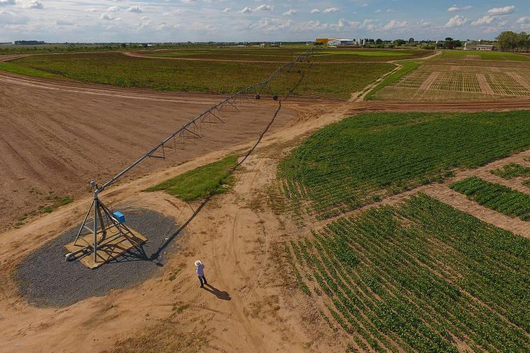 Centro de pesquisa e tecnologia do oeste baiano realiza estudos sobre o uso de pivô de irrigação em terras destinadas à soja no Matopiba
