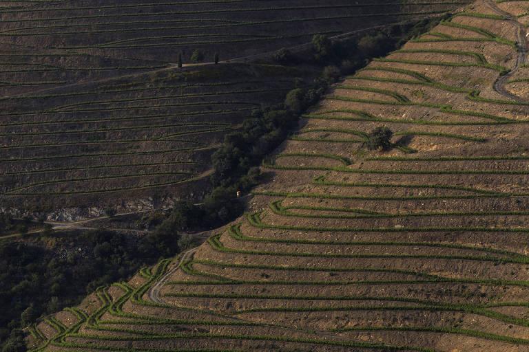 Em Portugal, atrações ficam não muito longe dos olhos e bem perto do estômago