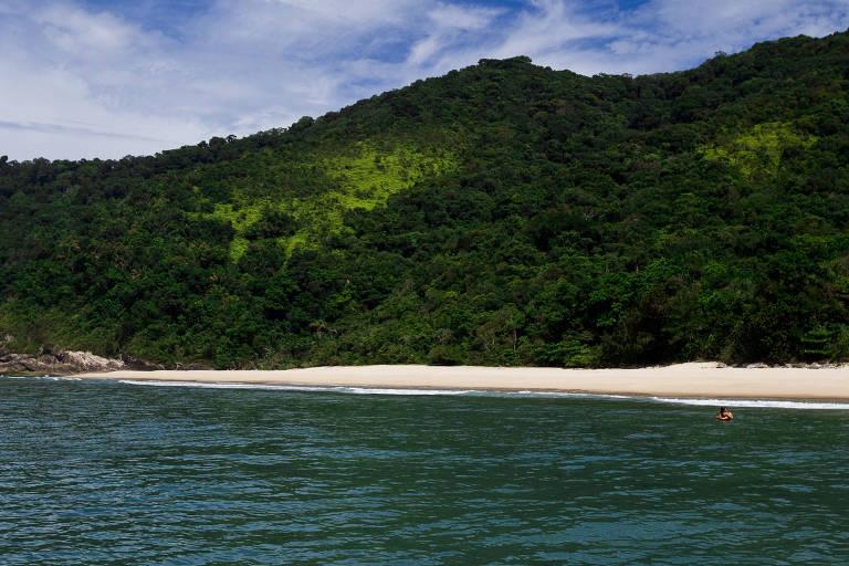 Praia deserta com grande morro coberto de vegetação ao fundo
