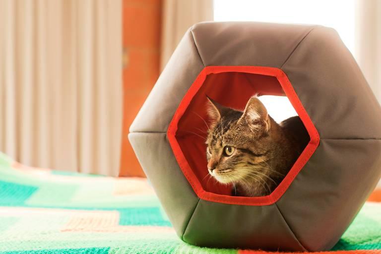 Toca anatômica hexagonal da Gatton, que custa R$ 199,90