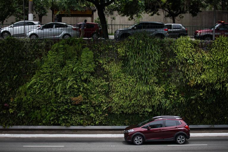 Corredor verde na 23 de Maio custa R$ 106 mil mensais à gestão Covas
