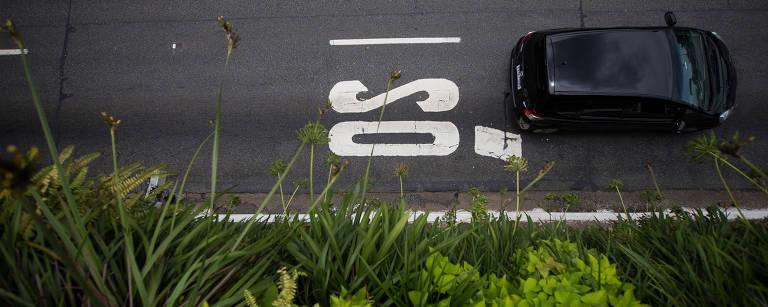 Corredor verde da 23 de Maio, em São Paulo