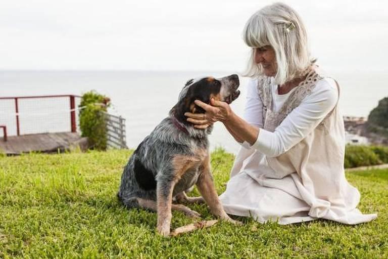 Novas ideias sobre como os cães envelhecem sugerem que nossos animais de estimação passam para a meia-idade mais rapidamente do que muitos humanos podem suspeitar