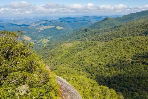 Forest landscape at Monte Verde, Minas Gerais, Brazil. Foto: Guilherme / Adobe stock