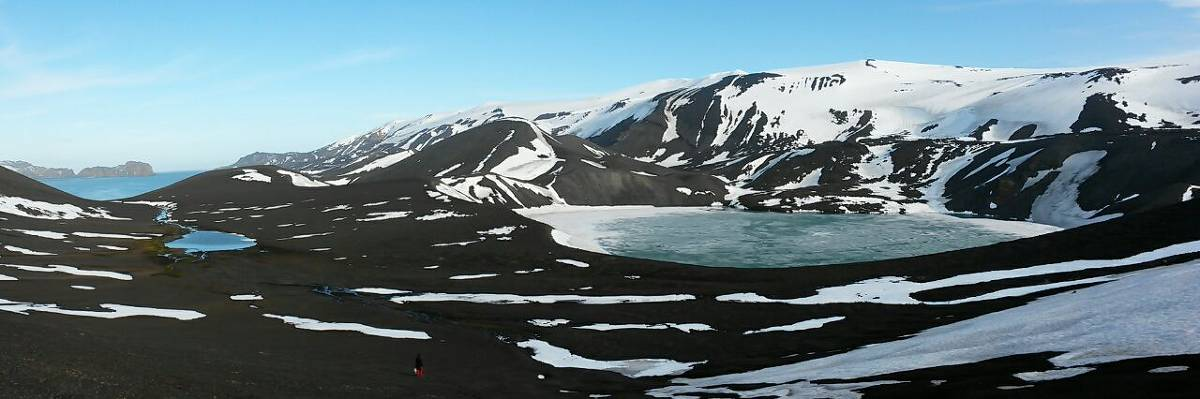 Island in Antarctica cleared for tourism has DNA from fungi, onion and Cannabis