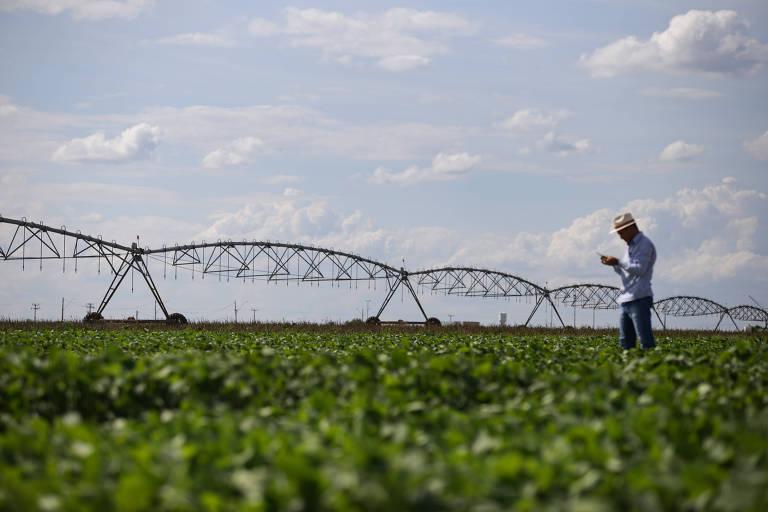 Centro de Pesquisa e Tecnologia do Oeste Baiano realiza estudos com uso de Pivô de irrigação em terras destinadas à Soja no Matopiba. Uso da água na região preocupa especialistas em recursos hídricos no Brasil, pelo elevado uso de águas do aquífero Urucuia para irrigação.