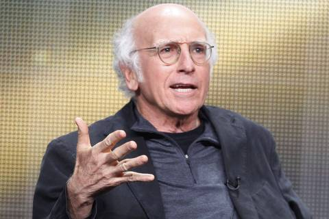 Comedian Larry David speaks at the Television Critics Association Cable TV Summer press tour in Beverly Hills, California, in this file photo taken July 25, 2013. David's new play,