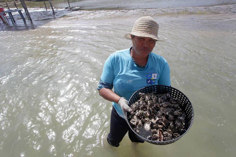 Em Tibau do Sul (a 77km de Natal), águas mansas, uma lagoa que deságua no mar, falésia escarpadas com vegetação ainda nativa, um dos passeios mais concorridos é o  barco gastronômico pela lagoa Guaraíras