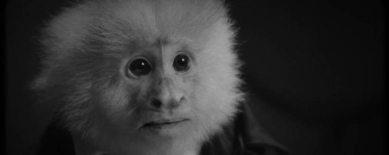 "Cena de ""What Did Jack Do?"", curta-metragem de David Lynch"