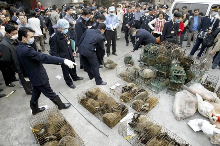 Em 2004, polícia chinesa confisca civetas (um dos reservatórios do vírus da Sars) em um mercado em Guangzhou; cerca de 10 mil bichos foram mortos