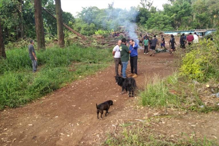 Guaranis protestam contra derrubada de árvores em área ao lado de aldeia no Pico do Jaraguá