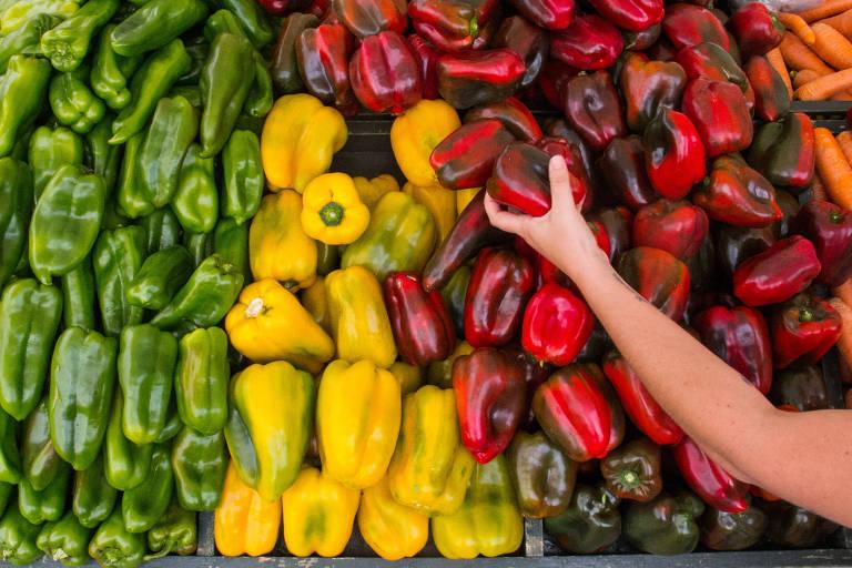 Feira de alimentos dentro da Ceagesp, em São Paulo, o maior entreposto de distribuição de alimentos da América Latina