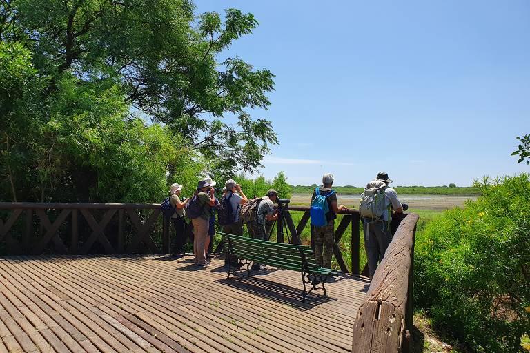 Turistas fazem observação de pássaros na Reserva Ecológica Costaneira Sur, que fica dentro de Buenos Aires