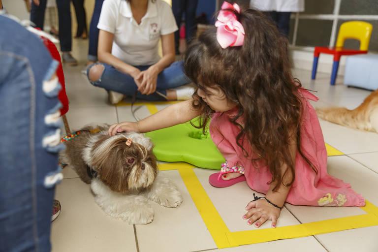 Hospitais recebem a visita de animais para animar pacientes