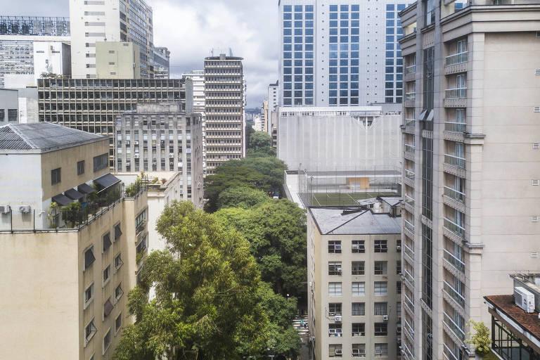 Com árvores próximas da morte, São Paulo se aproxima de apagão verde