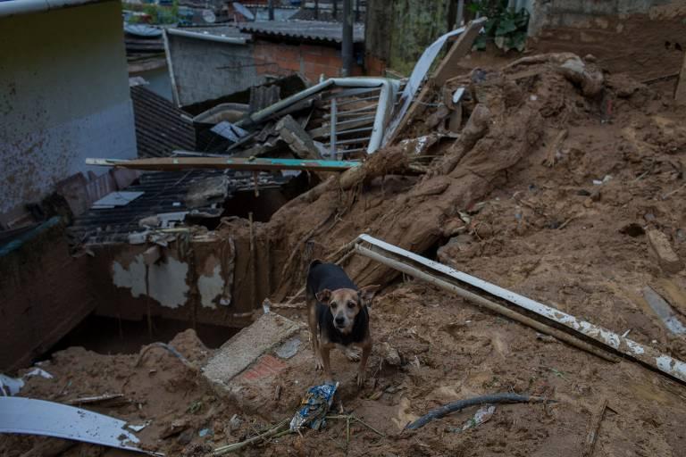 Deslizamento de terra no Morro Vila Baiana, em Guarujá, na Baixada Santista
