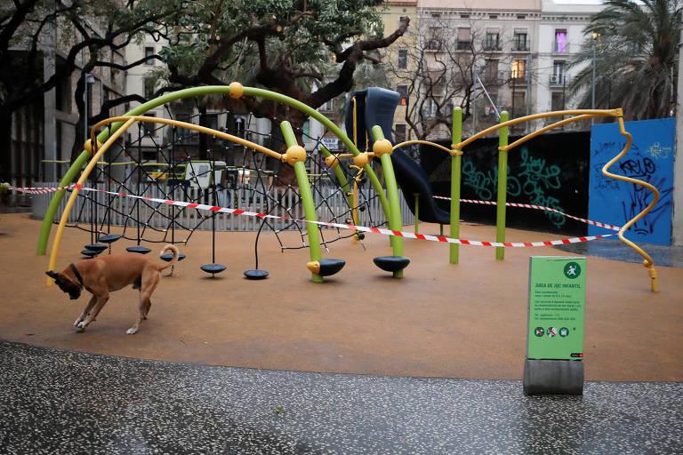 Cachorro brinca em parquinho vazio em Barcelona