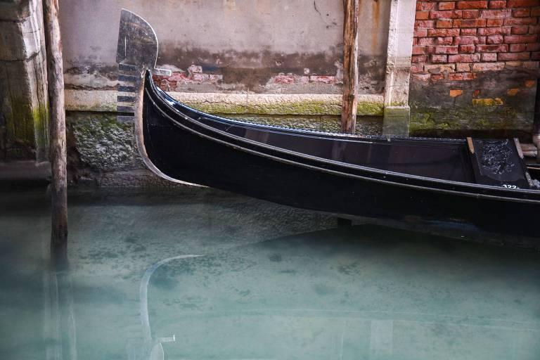 Canais de Veneza voltam a ter água cristalina