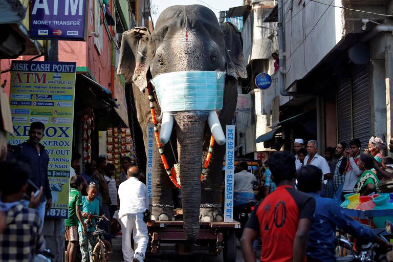 Em Chennai, réplica de elefante usando uma máscara de proteção é usada para conscientizar os indianos sobre a importância da prevenção contra o novo coronavírus