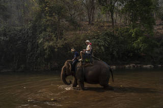 Tourists from Brazil ride an elephant at Maetaeng Elephant Park, north of the city of Chiang Mai, Thailand, on March 22, 2020. (Adam Dean/The New York Times)