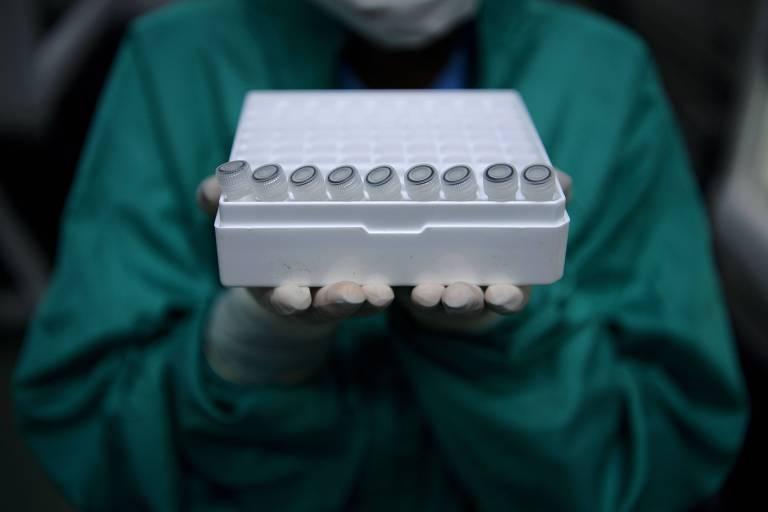 Cientista da Fiocruz, no Rio de Janeiro, com espécimes a serem testados para detecção de coronavírus