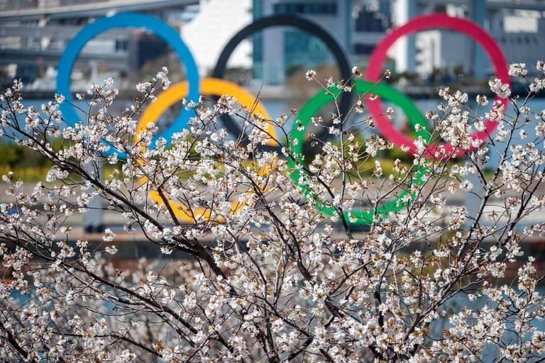 Anéis olímpicos atrás de cerejeira no distrito de Odaiba, em Tóquio