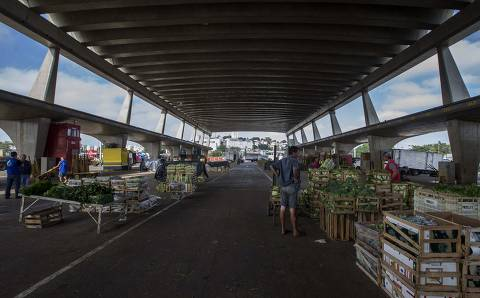 Pensamento míope faz países limitarem exportação de comida durante pandemia de coronavírus