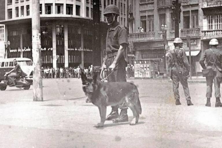 Policial com cachorro de polícia na calçada