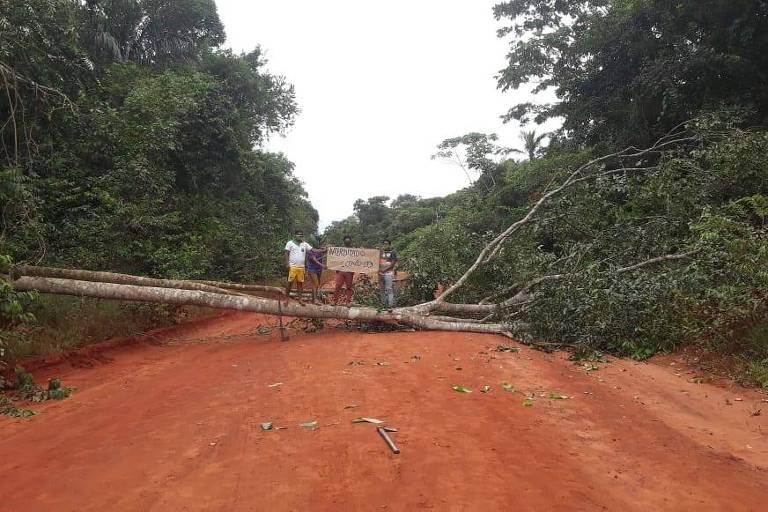Bloqueio feito com árvore atravessada estrada de terra que dá acesso ao Território Indígena do Xingu, em Mato Grosso.