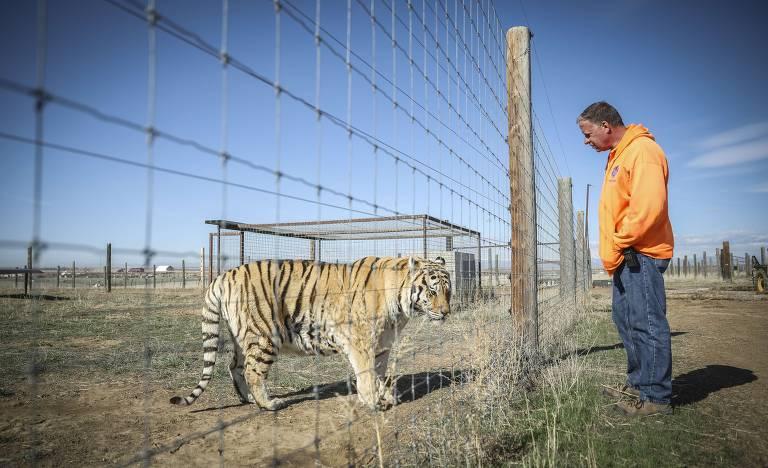 Joe Exotic inspirou série documental 'A Máfia dos Tigres'