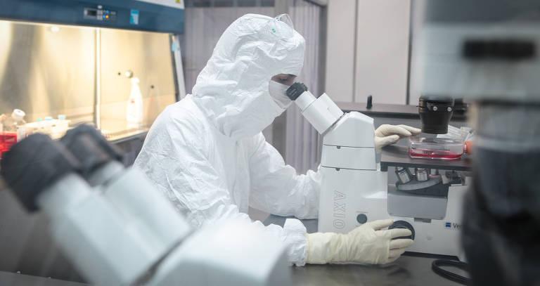 Cientistas na corrida contra o coronavírus