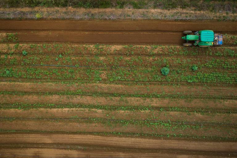 Agronegócio é um dos mais vulneráveis à mudança no clima, diz Ministério da Agricultura