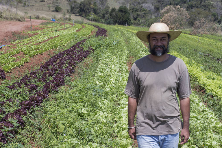 David caminha por uma horta com um chapeú de palha na cabeça