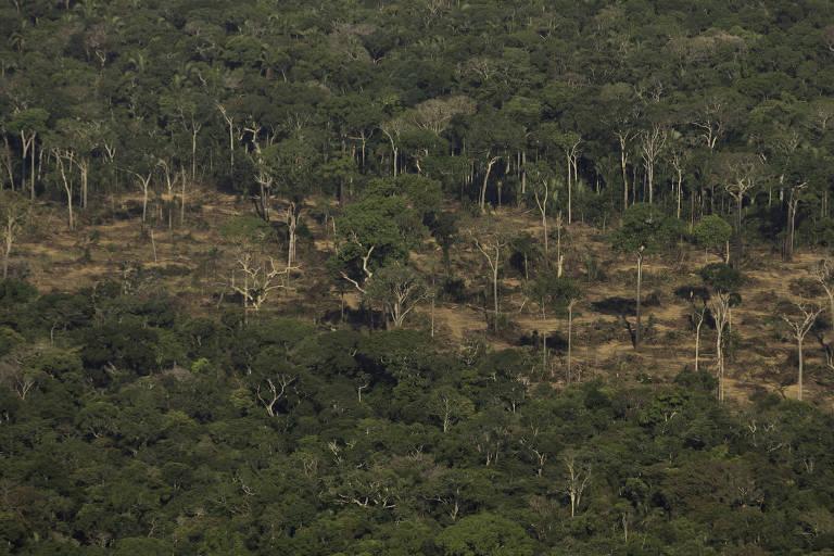 09.ago.2019 - Terreno desmatado e queimado é visto na floresta Amazônia nos arredores de Porto Velho, em Rondônia
